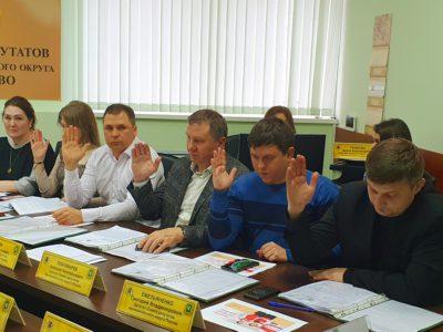 Руководители городских организаций отчитались перед депутатами