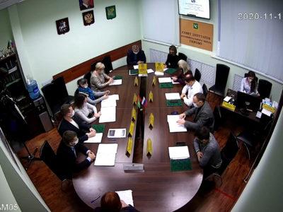 Заседание Совета депутатов МО Перово 12.11.2020