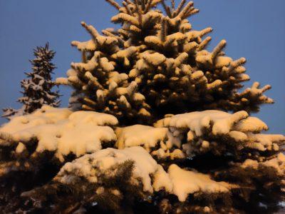 Перовчанам зимой будет где отдохнуть