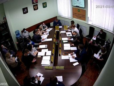 Заседание Совета депутатов МО Перово 09.03.2021