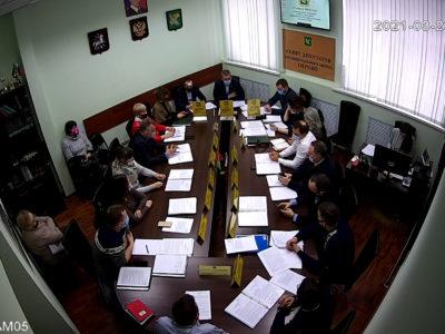 Заседание Совета депутатов МО Перово 23.03.2021