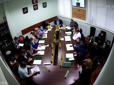 Заседание Совета депутатов МО Перово 01.06.2021
