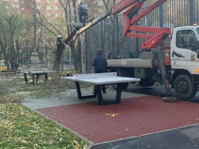 С территории Школы № 920 оперативно удалили повреждённое дерево
